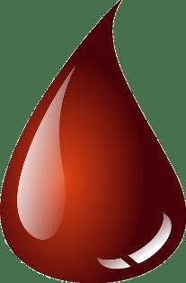 Test NIFTY czy od ojca też pobiera się krew?